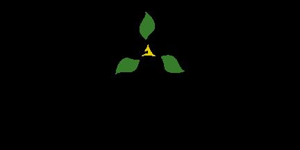 Ontario Trillium 2017 Logo