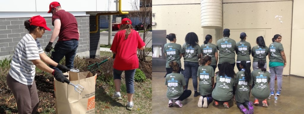 Volunteers gardening and do the cn tower climb